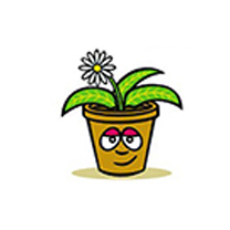 floristeria la mazeta mjdolado