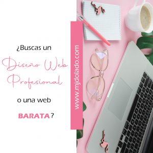 ¿Buscas un Diseño Web profesional o una Web barata?